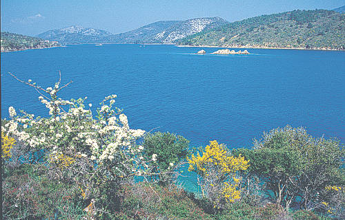The untouched natural beauties of Lesvos island.